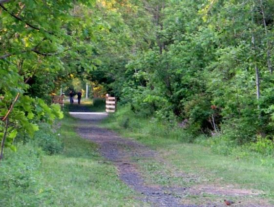 Albany County Rail Trail